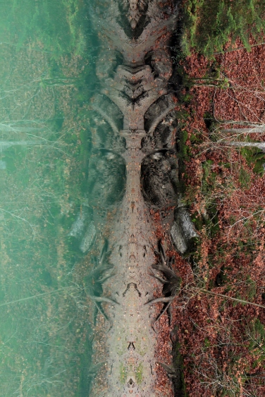 Spirits of Lake Lessoc