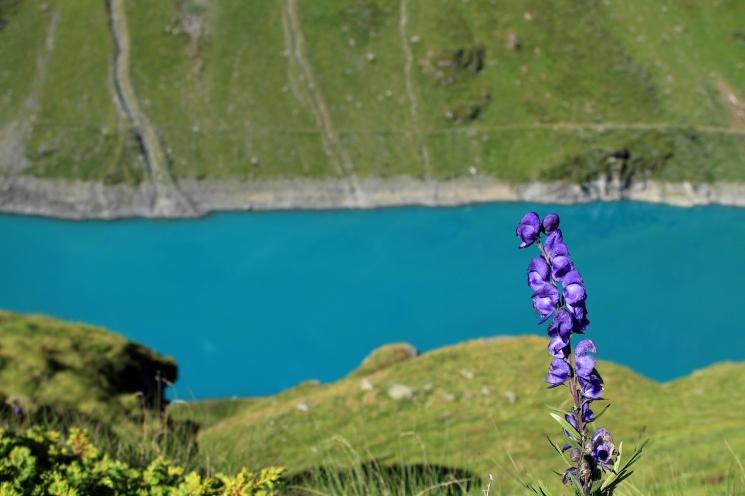 Lac de Cleuson